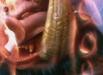 dragonblade_08