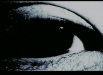 Evil-Dead-Trap_01