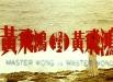masterwongvsmasterwong_08