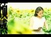 thesunflowers_03