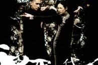 Esce il 20 marzo 2014 in DVD in Italia il nuovo film di Wong Kar-wai sulla figura di Ip Man.