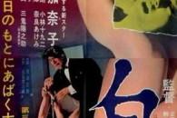 Daydream tratto da un racconto di Tanizaki è riconosciuto come il primo film erotico commerciale giapponese.