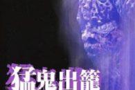 Horror hongkonghese minore uscito nel periodo d'oro di titoli del calibro di Devil Fetus, Red Spell Spells Red, Seeding of a Ghost e The Boxer's Omen.